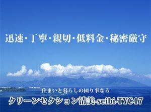 クリーンセクション清美―seibi―TYC47
