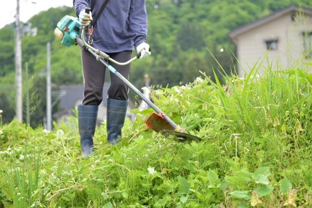 岡山市で草刈りに最適な年3回の時期~楽に草刈りを終えるコツまで徹底解説